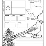 TexasWorksheet