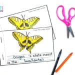 StateInsectWorksheets